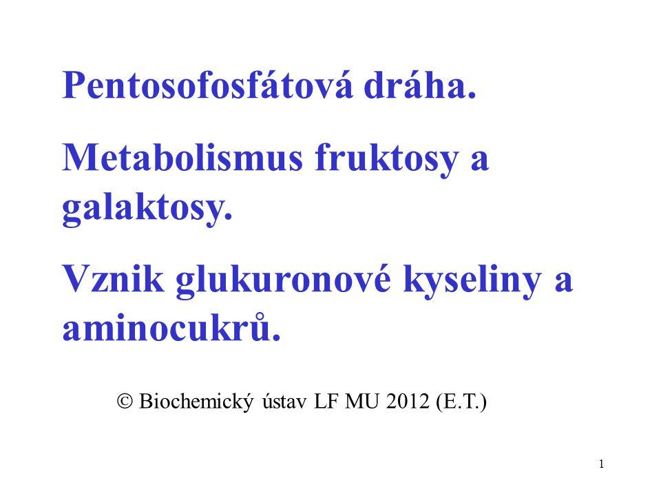  Biochemický ústav LF MU 2012 (E.T.)