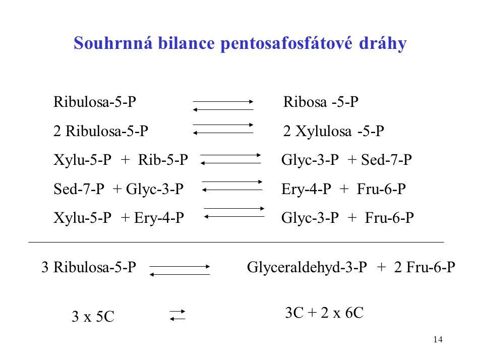 Souhrnná bilance pentosafosfátové dráhy