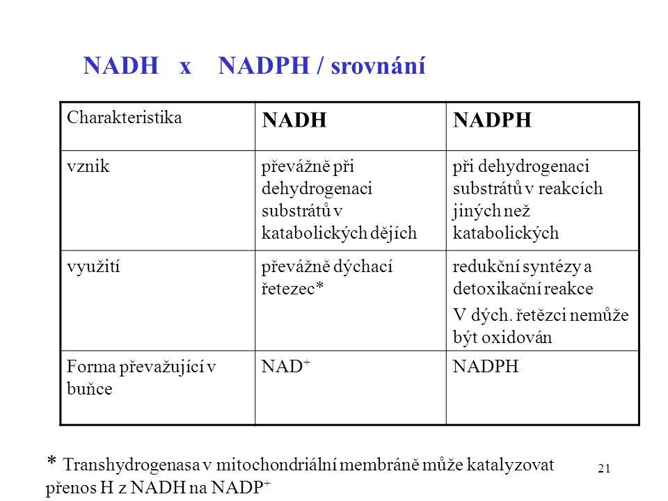 NADH x NADPH / srovnání NADH NADPH