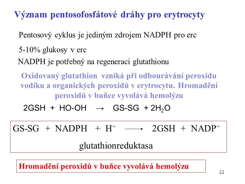 Význam pentosofosfátové dráhy pro erytrocyty