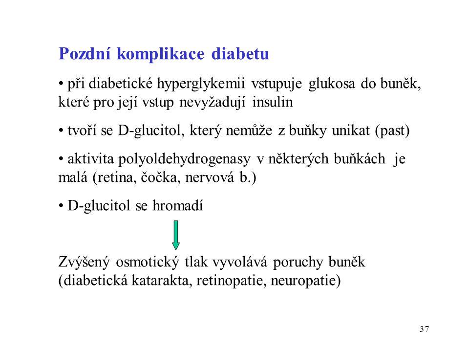 Pozdní komplikace diabetu