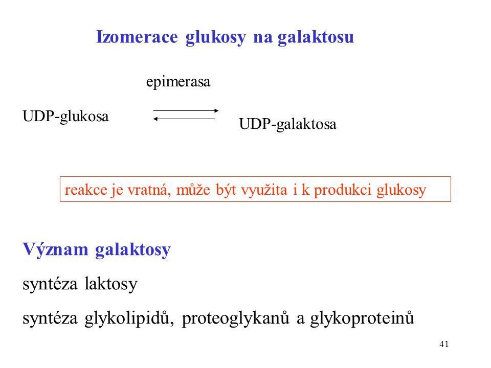 Izomerace glukosy na galaktosu