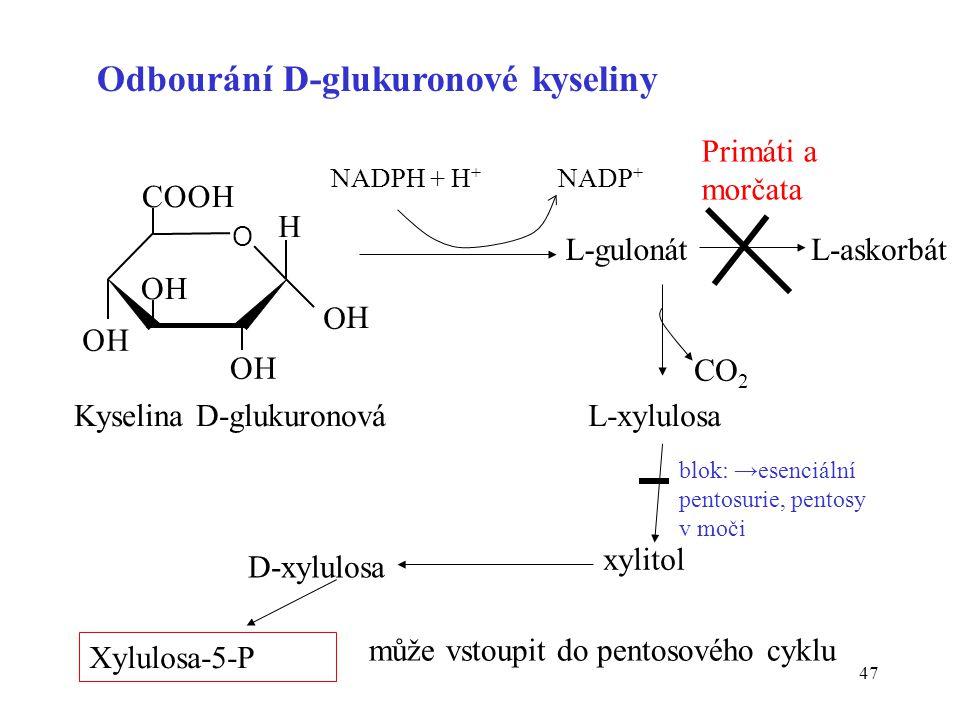 Odbourání D-glukuronové kyseliny