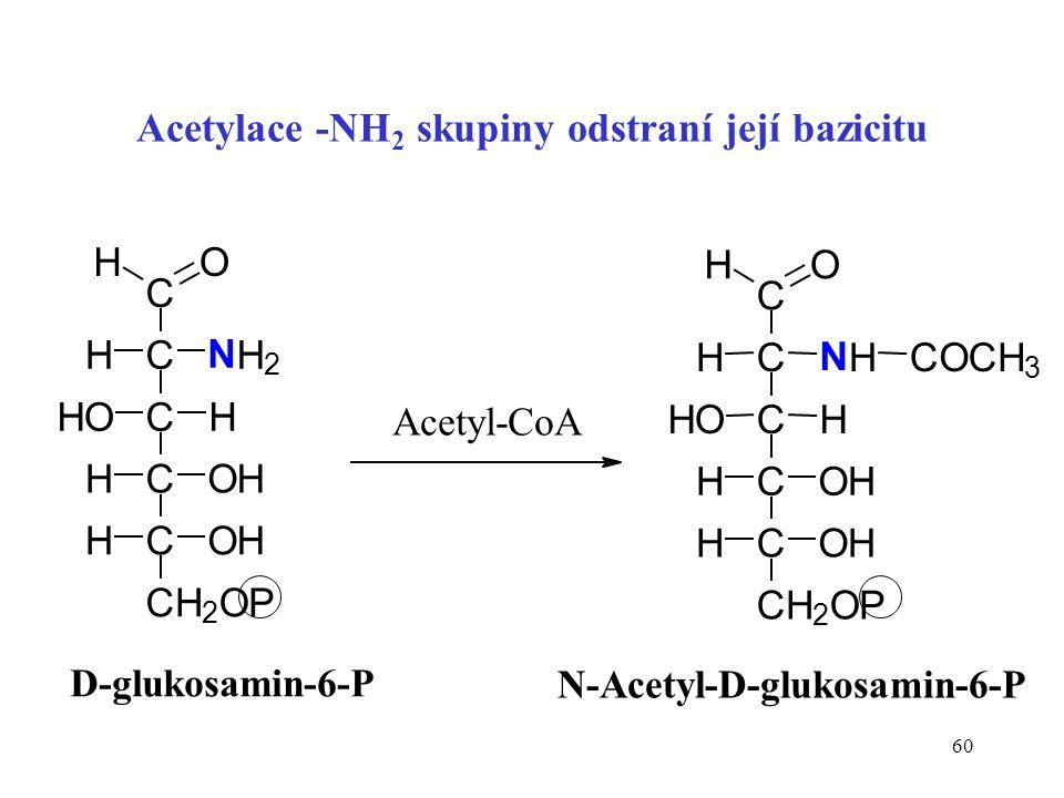 Acetylace -NH2 skupiny odstraní její bazicitu