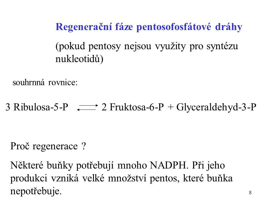 Regenerační fáze pentosofosfátové dráhy