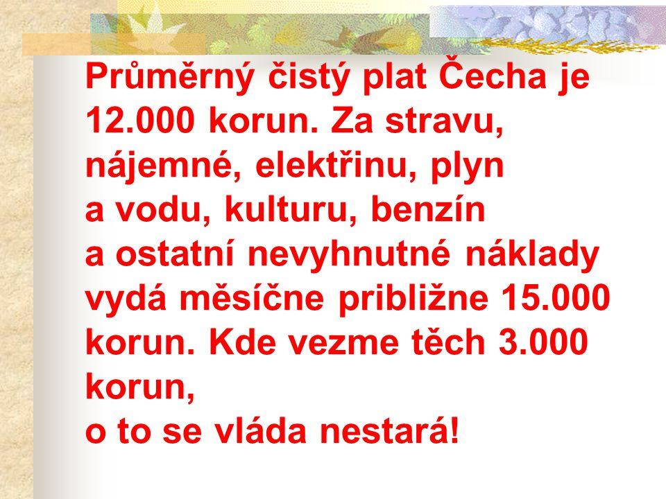 Průměrný čistý plat Čecha je 12. 000 korun