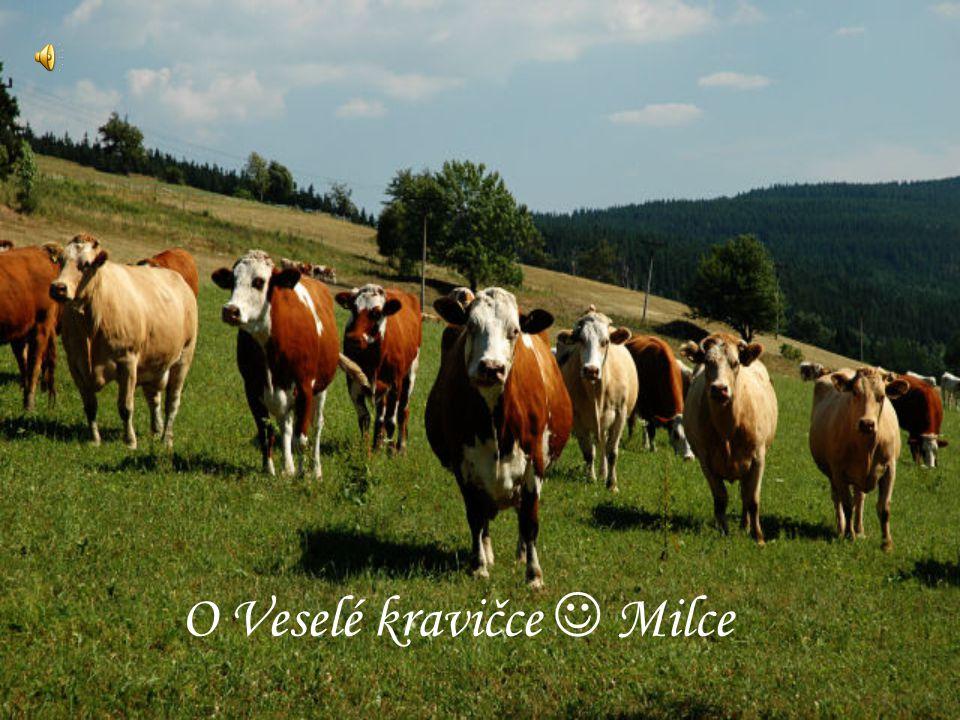 O Veselé kravičce  Milce
