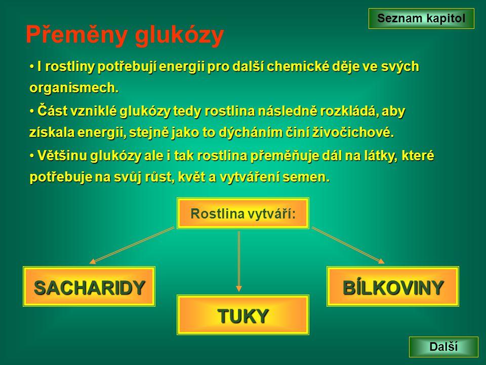 Přeměny glukózy SACHARIDY BÍLKOVINY TUKY
