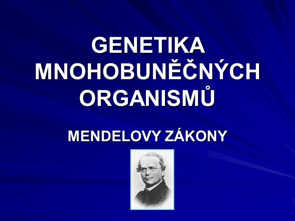 GENETIKA MNOHOBUNĚČNÝCH ORGANISMŮ