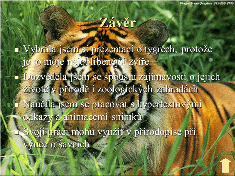 Závěr Vybrala jsem si prezentaci o tygrech, protože je to moje nejoblíbenější zvíře.