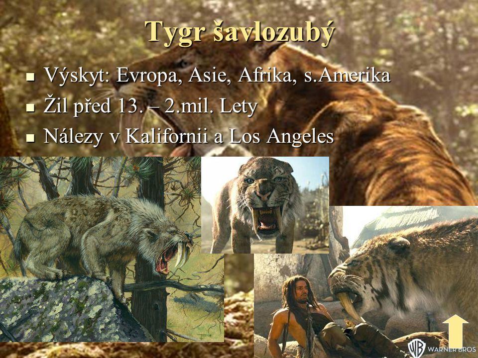 Tygr šavlozubý Výskyt: Evropa, Asie, Afrika, s.Amerika