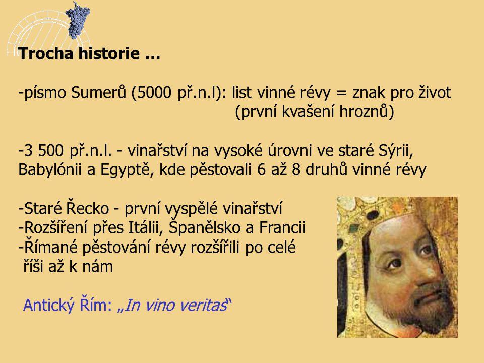 Trocha historie … písmo Sumerů (5000 př.n.l): list vinné révy = znak pro život. (první kvašení hroznů)