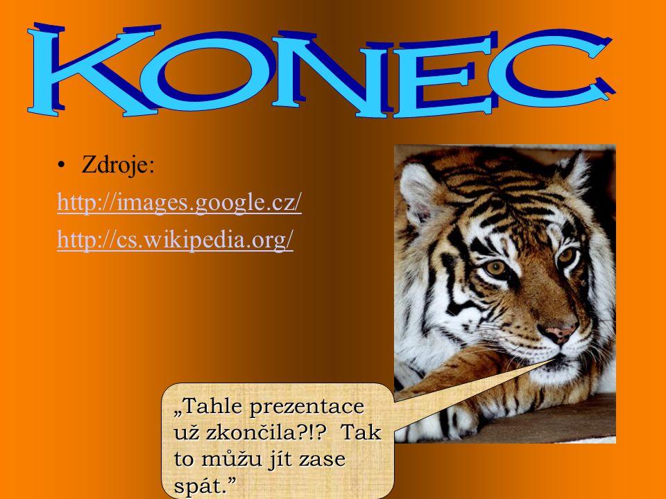 Konec Zdroje: http://images.google.cz/ http://cs.wikipedia.org/