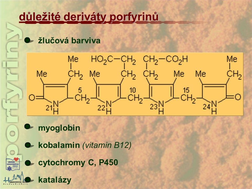 důležité deriváty porfyrinů