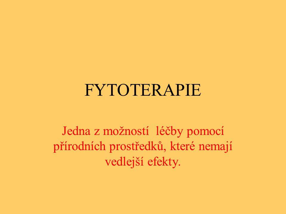 FYTOTERAPIE Jedna z možností léčby pomocí přírodních prostředků, které nemají vedlejší efekty.