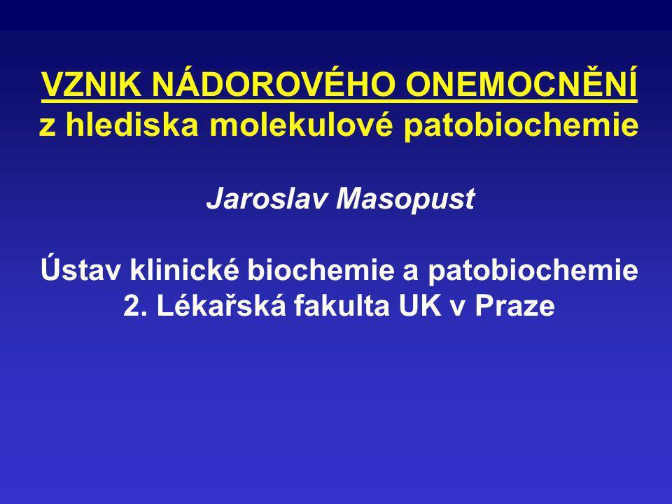 VZNIK NÁDOROVÉHO ONEMOCNĚNÍ z hlediska molekulové patobiochemie