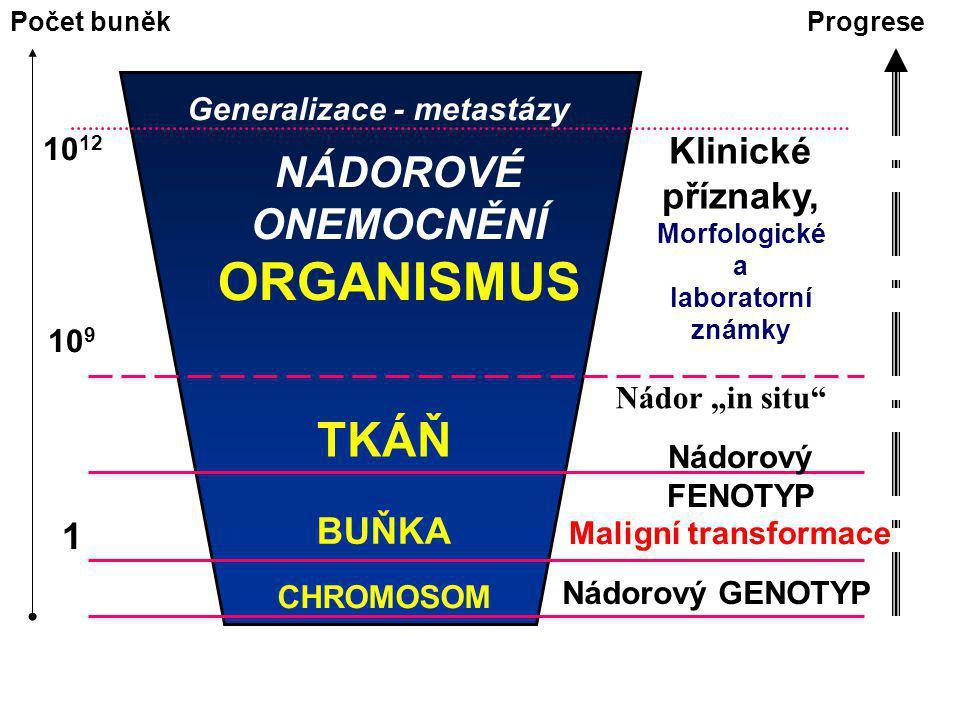 Generalizace - metastázy