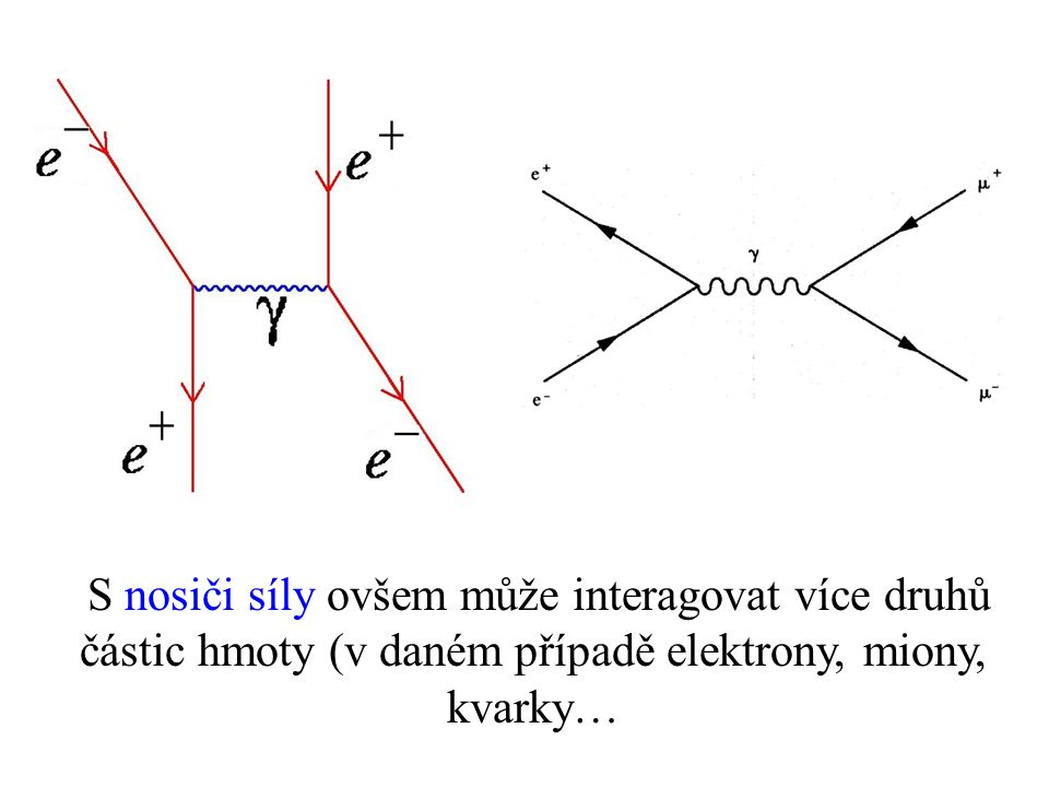 S nosiči síly ovšem může interagovat více druhů částic hmoty (v daném případě elektrony, miony, kvarky…