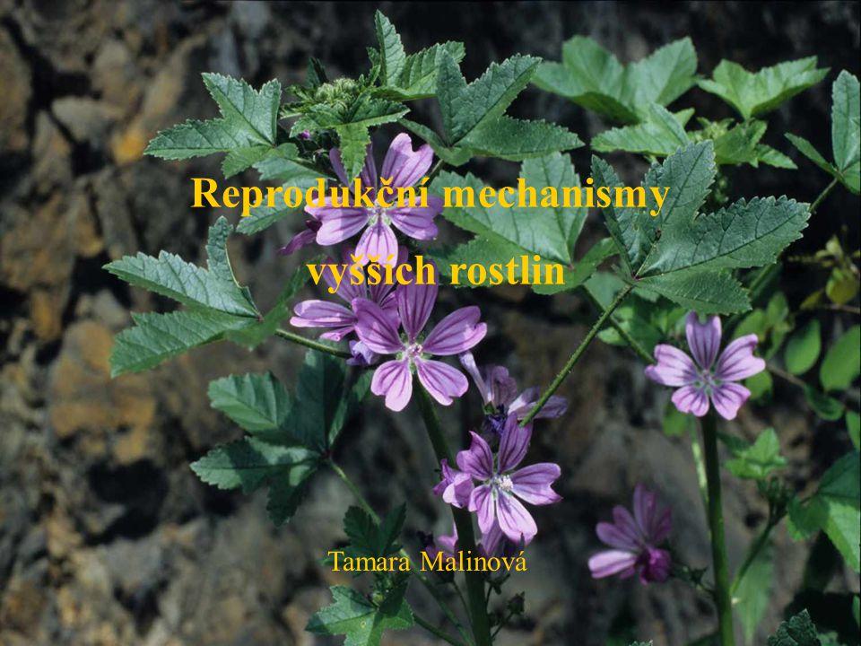 Reprodukční mechanismy