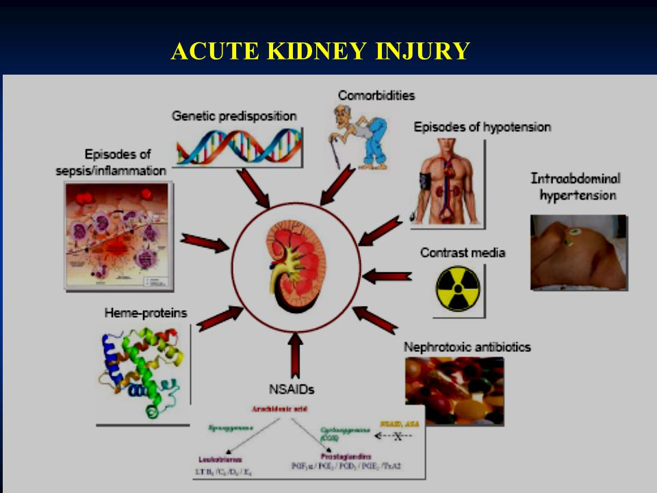 ACUTE KIDNEY INJURY 2008