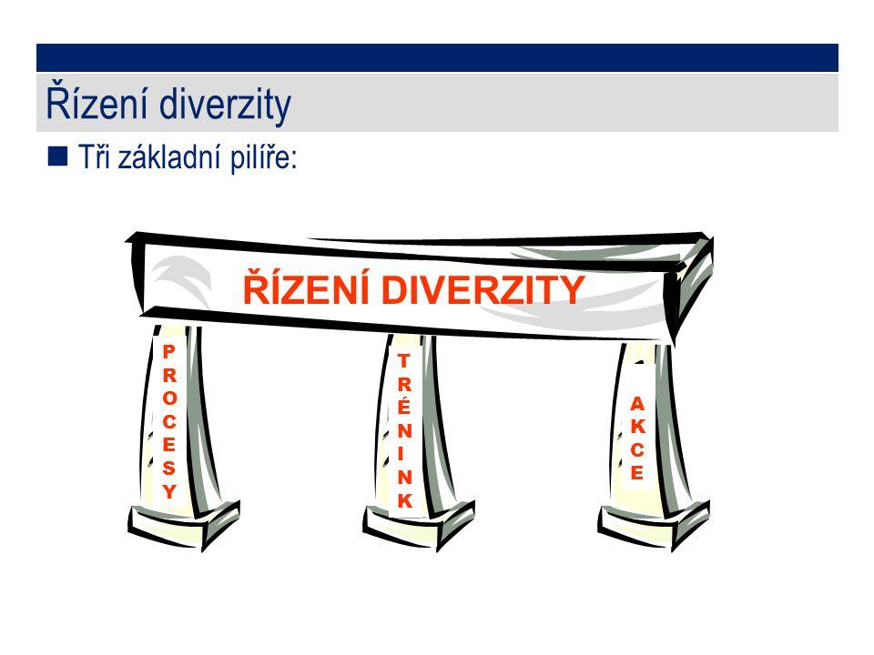 Řízení diverzity ŘÍZENÍ DIVERZITY Tři základní pilíře: P R T O R C É A