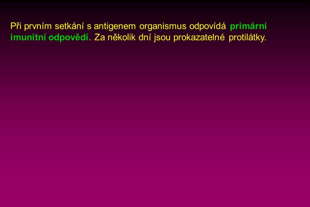 Při prvním setkání s antigenem organismus odpovídá primární imunitní odpovědí.