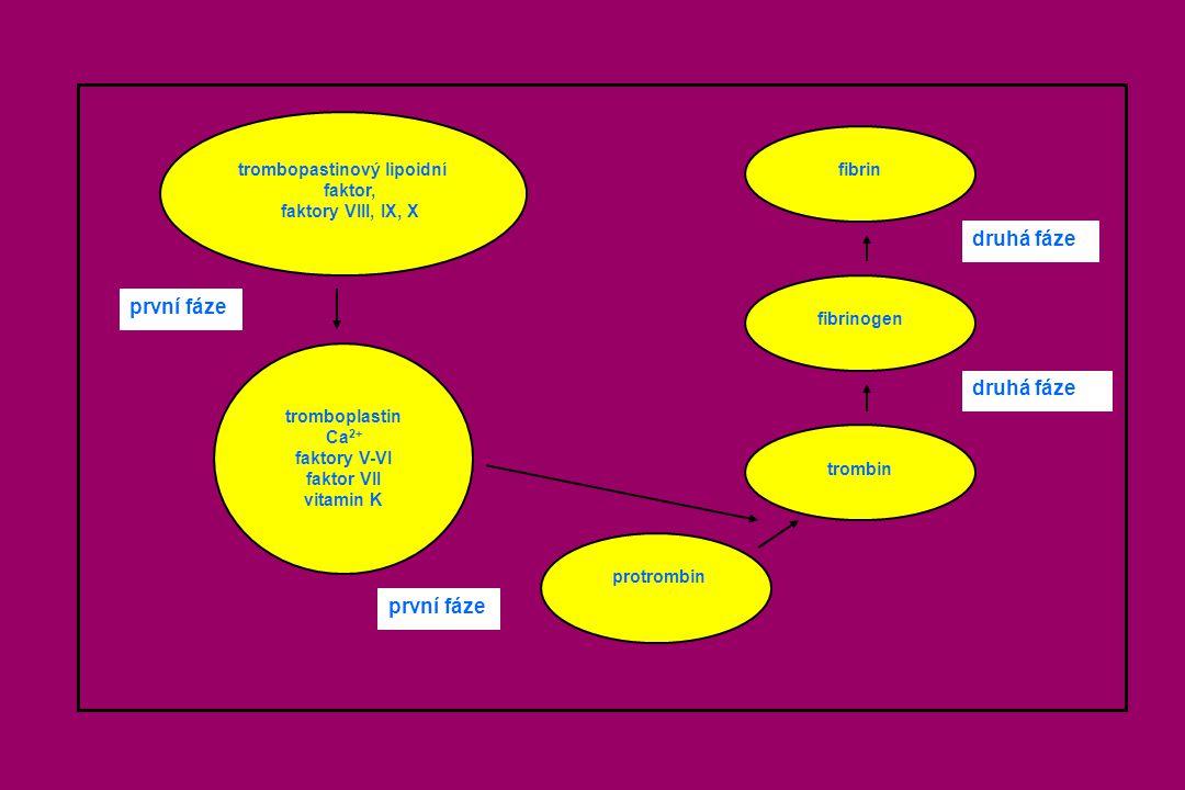 druhá fáze první fáze trombopastinový lipoidní fibrin faktor,