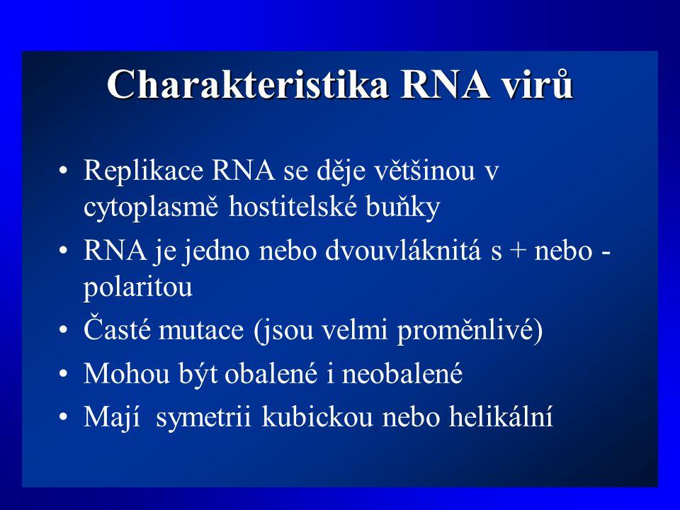 Charakteristika RNA virů