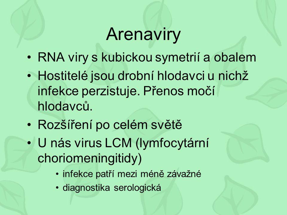 Arenaviry RNA viry s kubickou symetrií a obalem