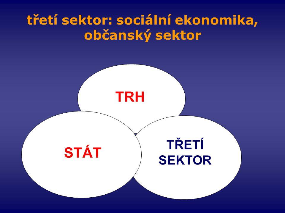 třetí sektor: sociální ekonomika, občanský sektor
