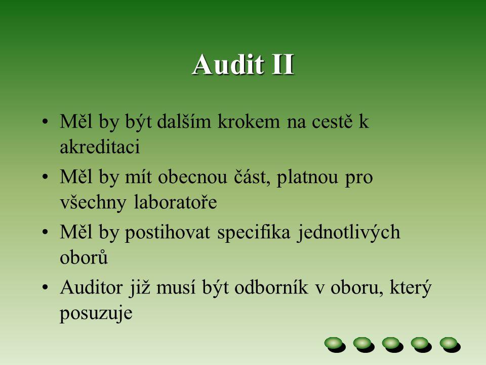 Audit II Měl by být dalším krokem na cestě k akreditaci