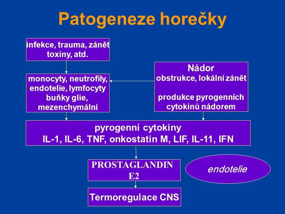 Patogeneze horečky Nádor pyrogenní cytokiny