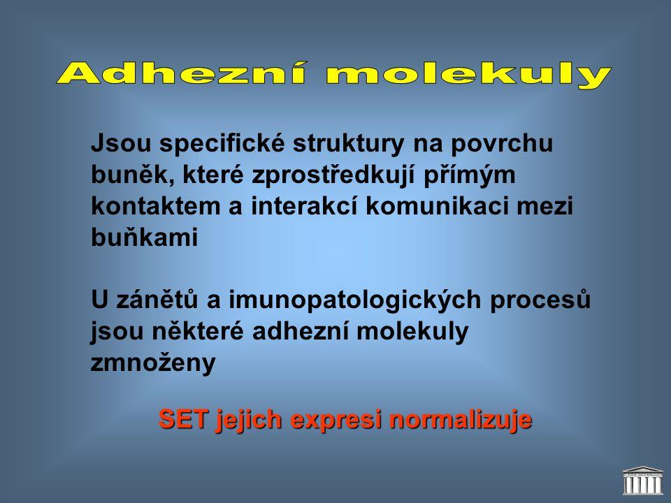 Adhezní molekuly Jsou specifické struktury na povrchu buněk, které zprostředkují přímým kontaktem a interakcí komunikaci mezi buňkami.