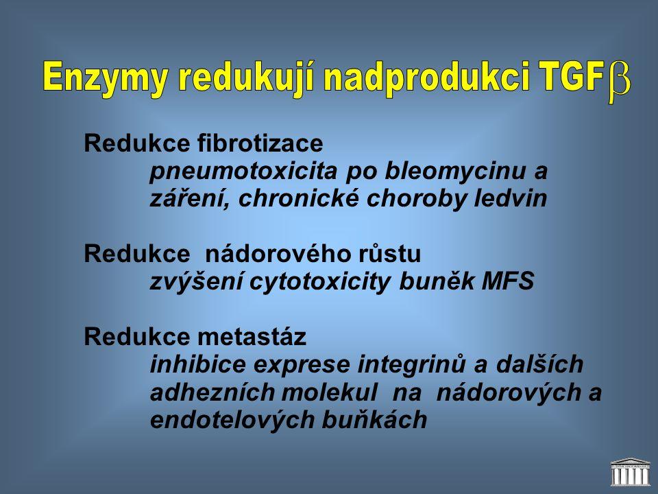 Enzymy redukují nadprodukci TGF