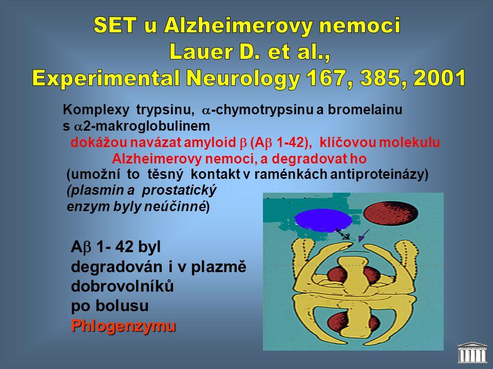 SET u Alzheimerovy nemoci Lauer D. et al.,