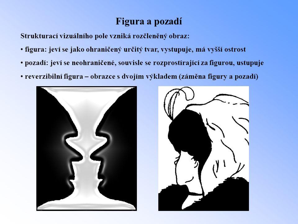 Figura a pozadí Strukturací vizuálního pole vzniká rozčleněný obraz: