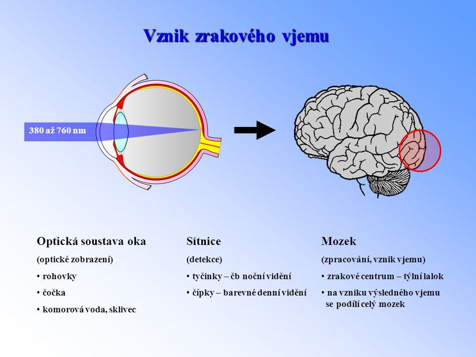 Vznik zrakového vjemu Optická soustava oka Sítnice Mozek 380 až 760 nm