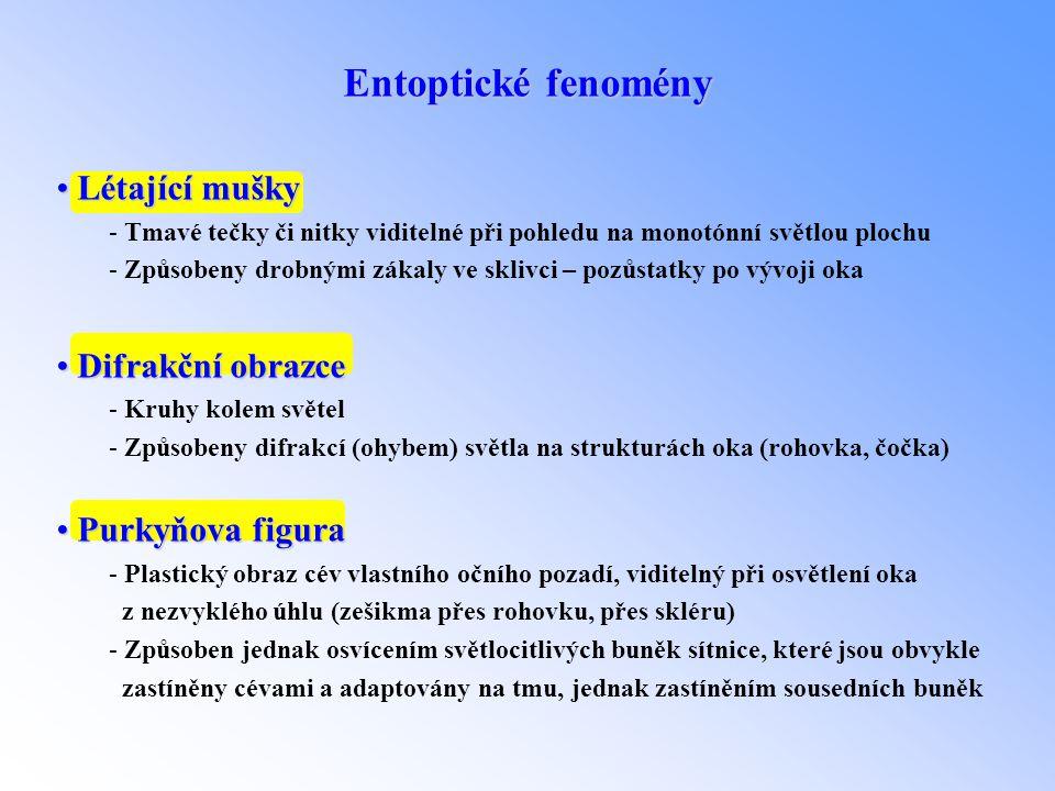 Entoptické fenomény Létající mušky Difrakční obrazce Purkyňova figura