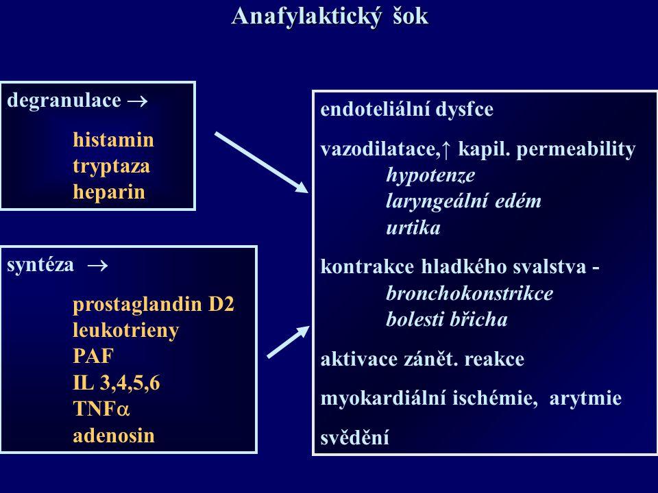 Anafylaktický šok degranulace  endoteliální dysfce