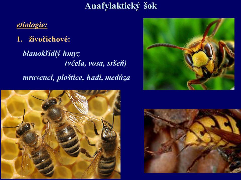 Anafylaktický šok etiologie: živočichové: