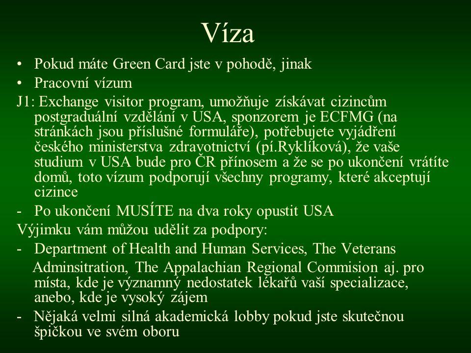 Víza Pokud máte Green Card jste v pohodě, jinak Pracovní vízum