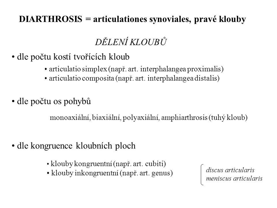 DIARTHROSIS = articulationes synoviales, pravé klouby