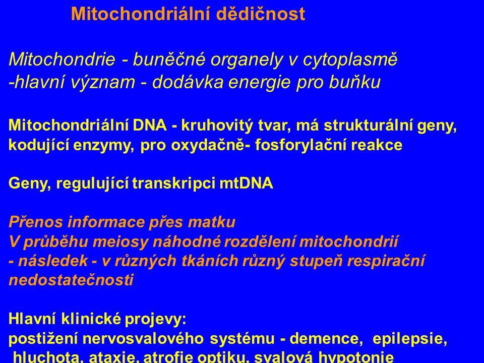 Mitochondriální dědičnost Mitochondrie - buněčné organely v cytoplasmě