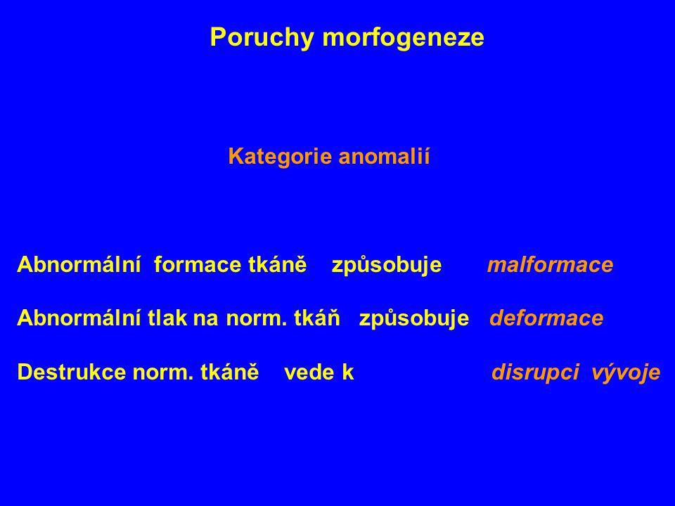 Poruchy morfogeneze Kategorie anomalií. Abnormální formace tkáně způsobuje malformace.