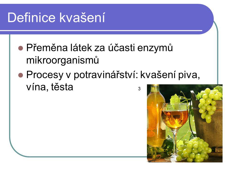 Definice kvašení Přeměna látek za účasti enzymů mikroorganismů
