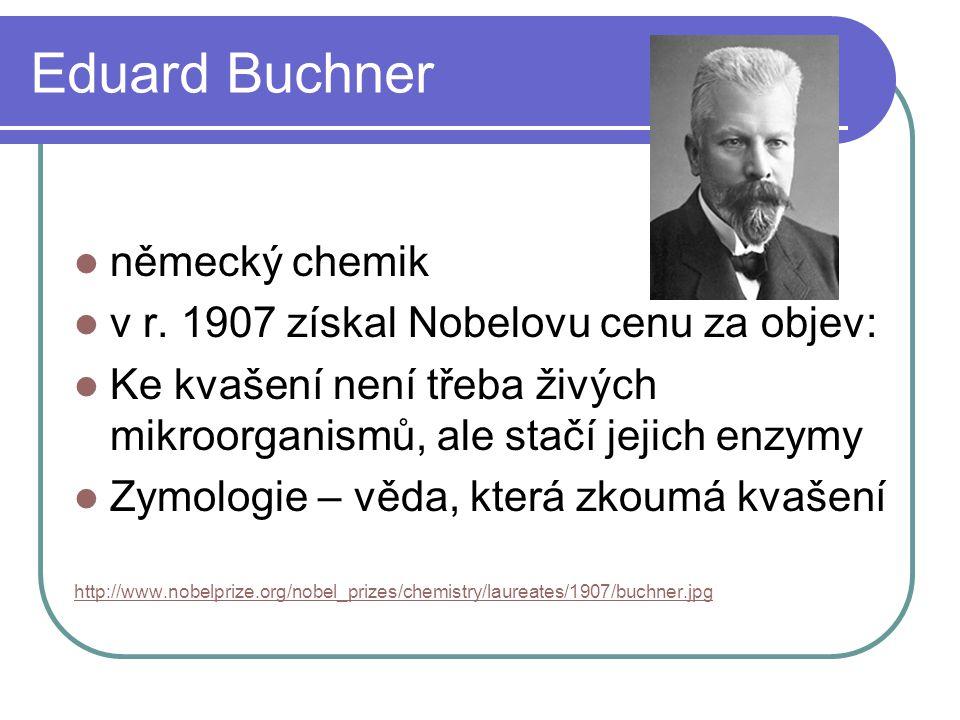 Eduard Buchner německý chemik v r. 1907 získal Nobelovu cenu za objev: