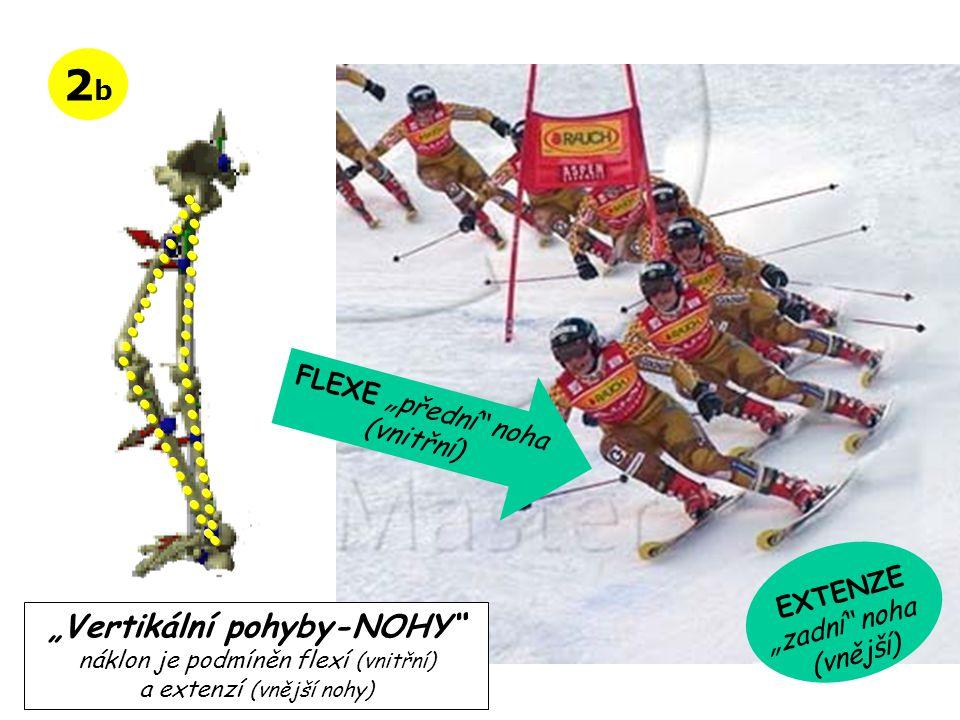 """2b """"Vertikální pohyby-NOHY FLEXE """"přední noha (vnitřní) EXTENZE"""