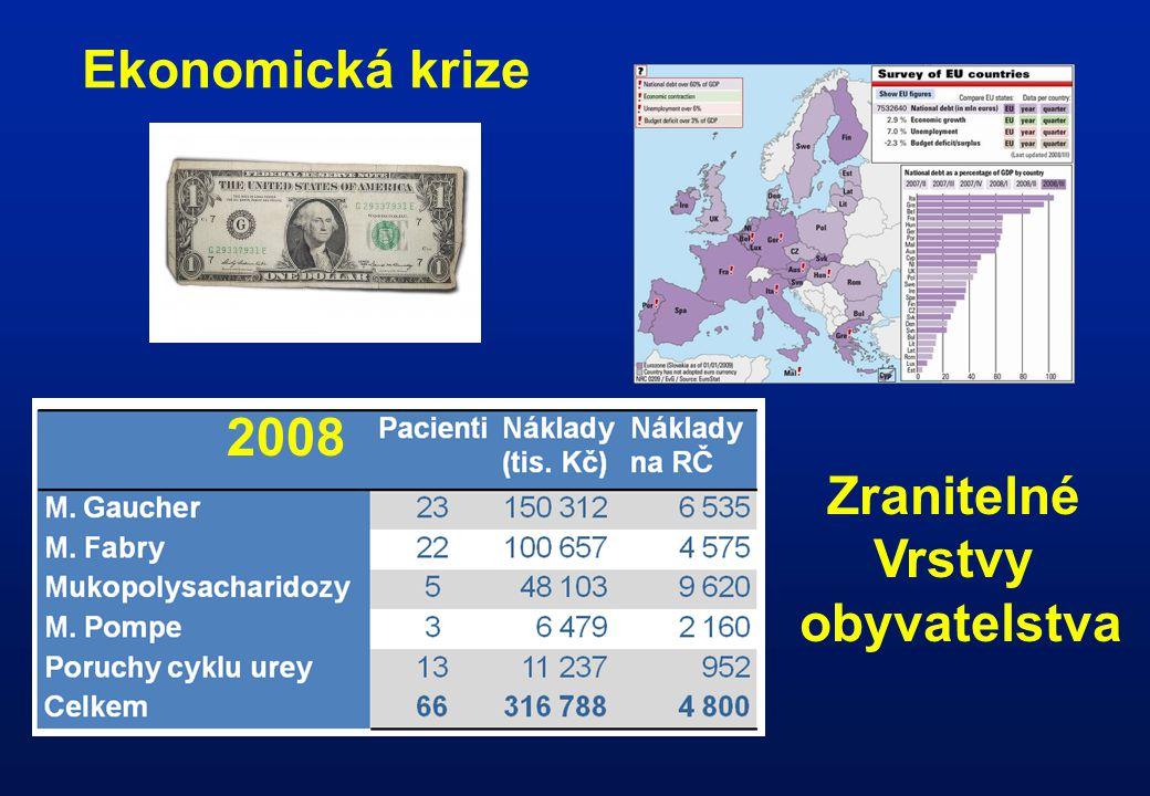 Ekonomická krize 2008 Zranitelné Vrstvy obyvatelstva