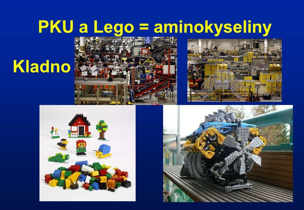 PKU a Lego = aminokyseliny
