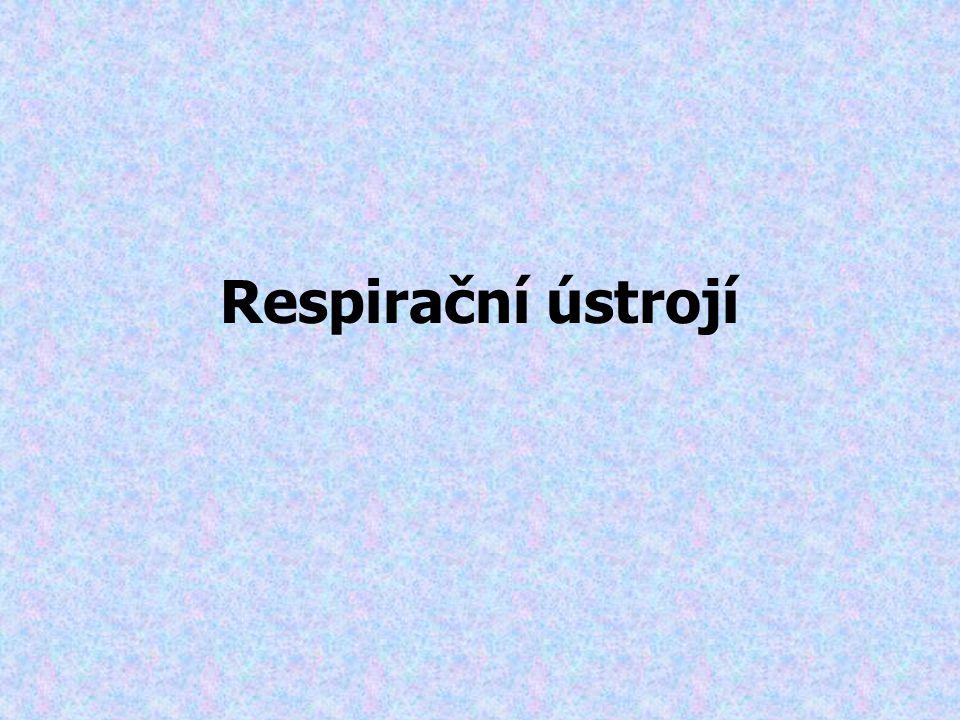 Respirační ústrojí